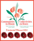 Communities in Bloom Logo 2008